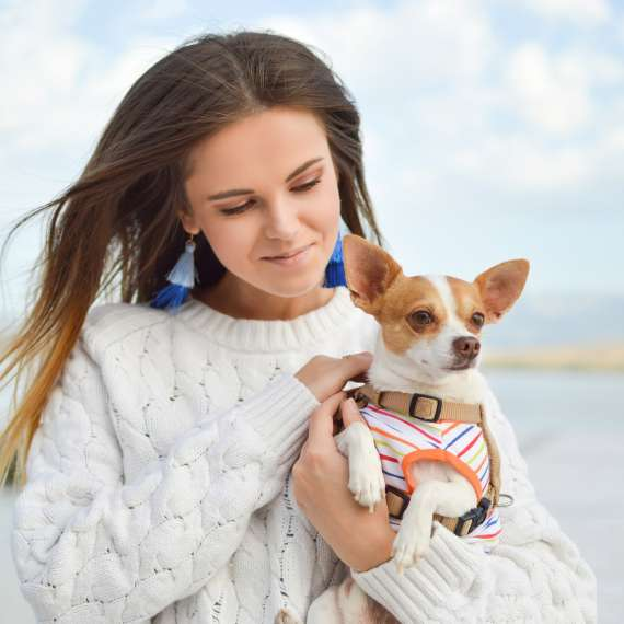 8 Top Ways To Care For Your Pet